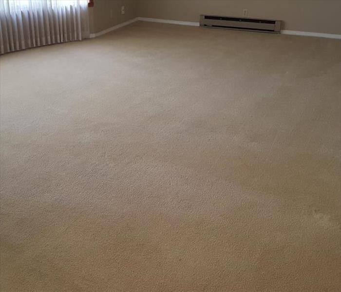 Residential Carpet Cleaning- Farmington, MO After