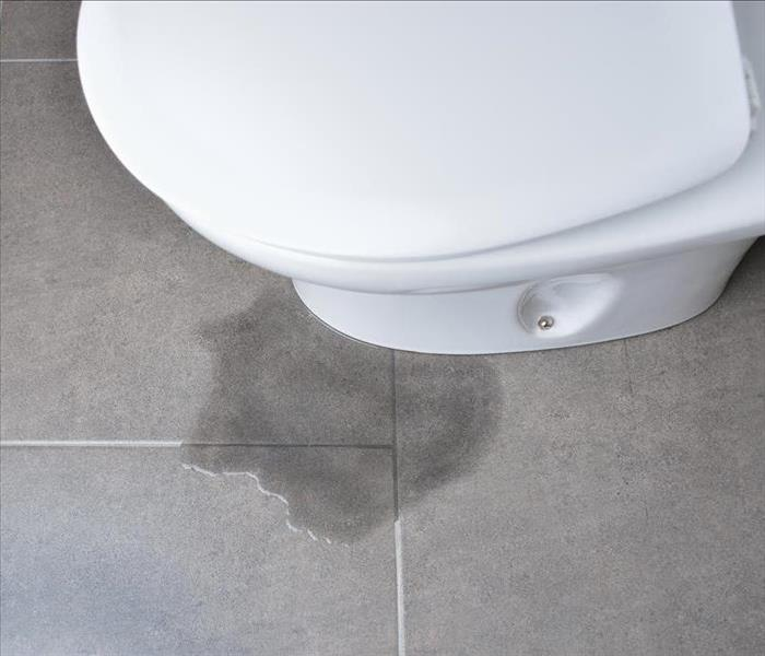 Puddle around toilet.