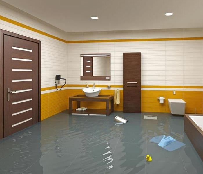 Basement bathroom that is flooded.