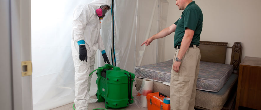 Farmington, MO mold removal process